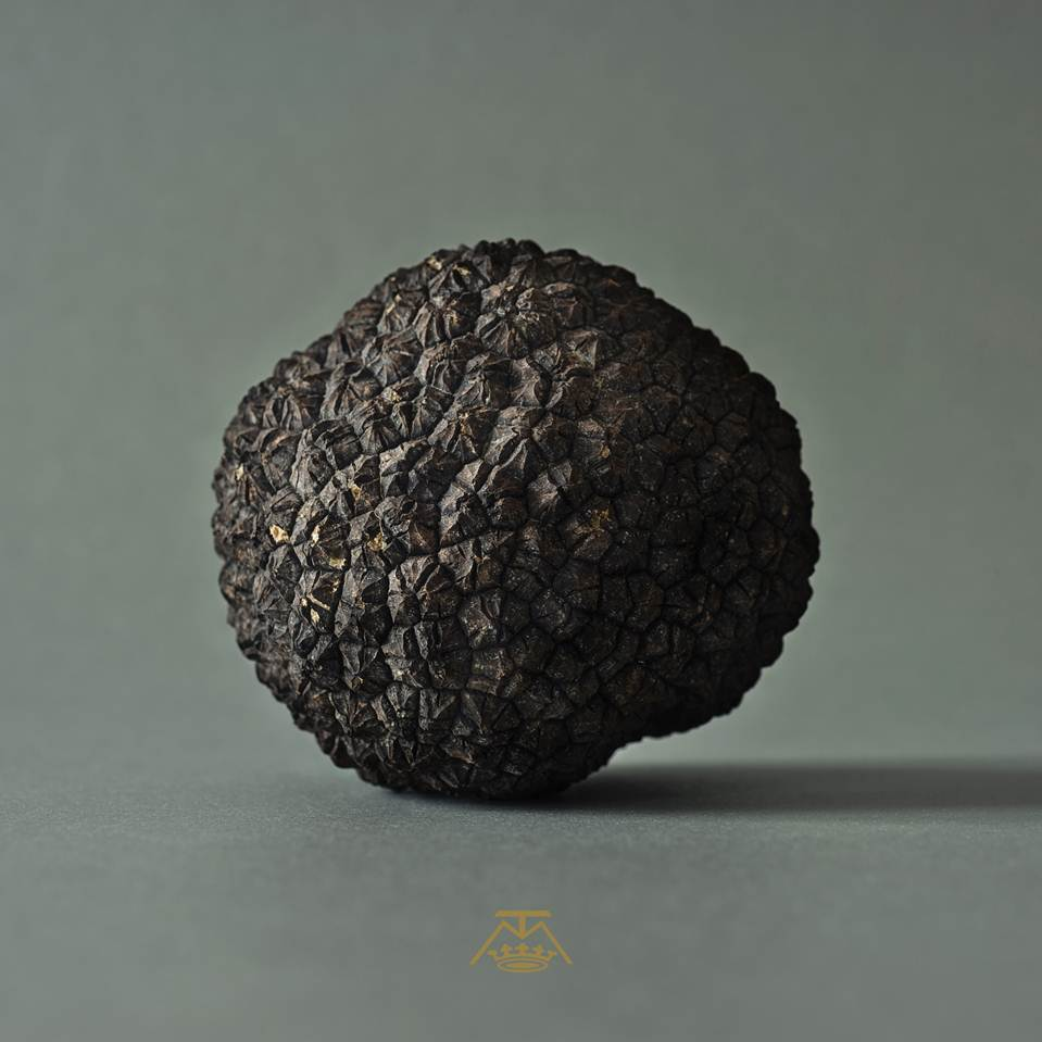 La maison de la truffe l 39 adresse incontournable depuis 1932 firstluxe - Comment cuisiner les truffes noires ...