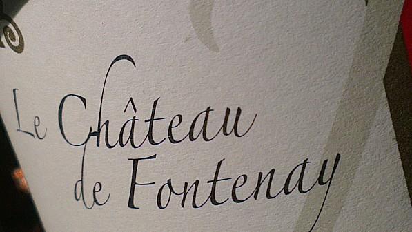 Château de Fontenay - Touraine