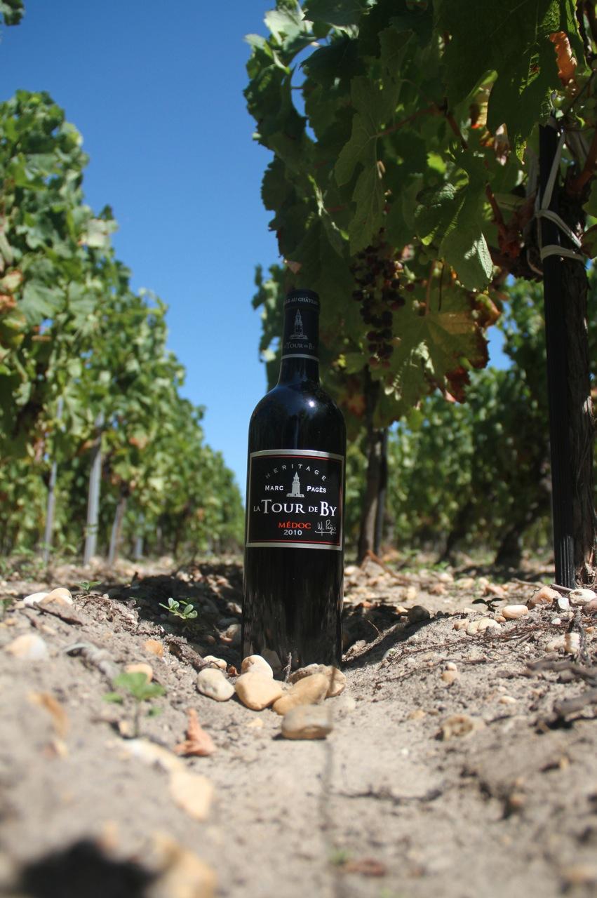 Marc Pages dans les vignes