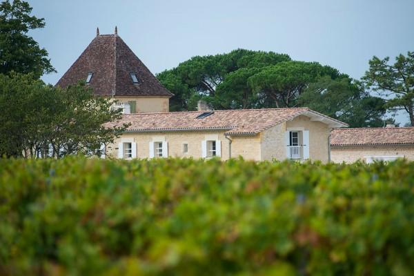 Ogier de Gourgue chateau_et_vignes